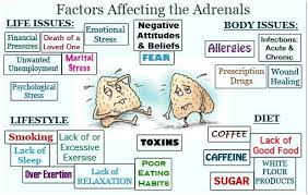 factoring affecting adrenal fatigue